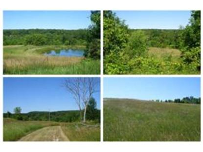 55.06 Acre State Road 57, Elkhart Lake, WI