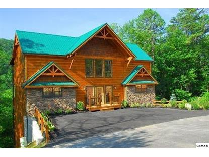 1373 Parkview Vista Way Weekend at Birnies Pigeon Forge, TN MLS# 190725