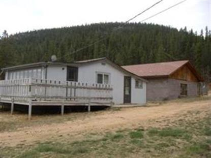 60 SMITH RD, Bailey, CO