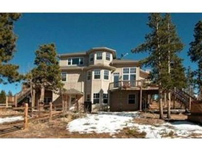 7130 COUNTY ROAD 43 , Bailey, CO