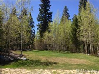 25 Meadows Lane Breckenridge, CO MLS# 1662876