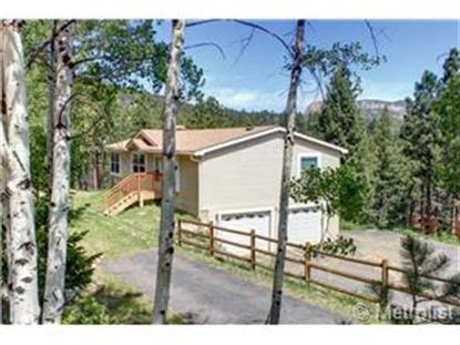 412 Lo Meadow Lane Bailey, CO MLS# 1745478