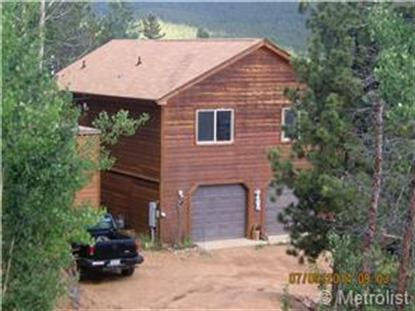515 Gold Flake Terrace Bailey, CO MLS# 1771502