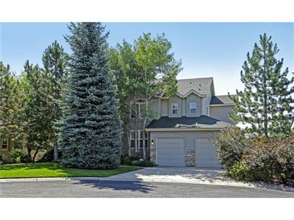 1064 Timbercrest Drive Castle Rock, CO MLS# 3071797