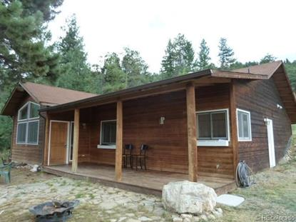101 Mable Lane Bailey, CO MLS# 3813752