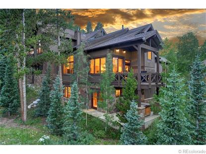86 Cucumber Patch Placer Road Breckenridge, CO MLS# 3918944