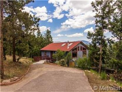 93 Columbine Drive Bailey, CO MLS# 4515185