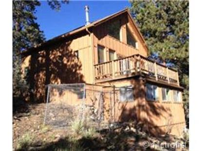 493 Juniper Lane Bailey, CO MLS# 4773114
