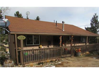 949 South Pine Drive Bailey, CO MLS# 4872287