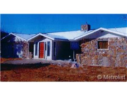 99 Quartz Circle Bailey, CO MLS# 5757843