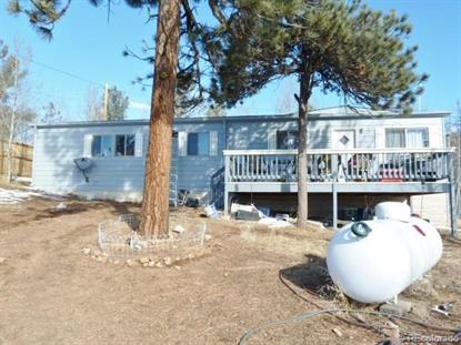 113 Ball Road Bailey, CO MLS# 5982051