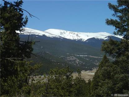 461 Hitchrack Road Bailey, CO MLS# 6156047