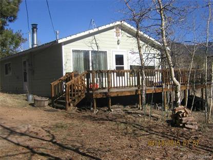 211 Snow Water Road Bailey, CO MLS# 6737926