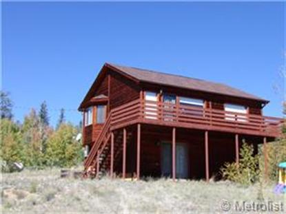 104 Thunder Lane Como, CO MLS# 6796388