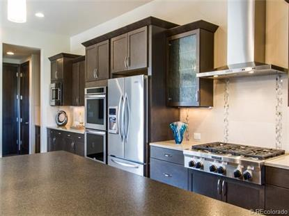 10263 Spring Green Drive Englewood, CO MLS# 6865292