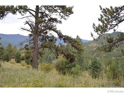 Hwy 285  Bailey, CO MLS# 6911156