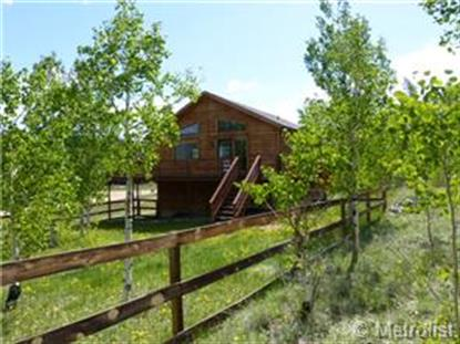 802 Aspen Drive Bailey, CO MLS# 7530831