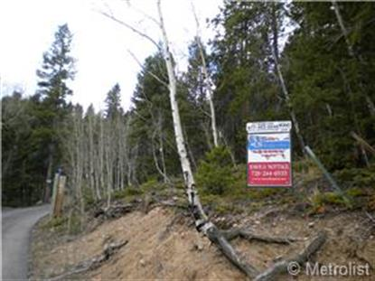 South Pine Drive Bailey, CO MLS# 8093807