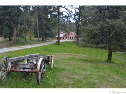 1190 Madge Gulch Road Sedalia, CO MLS# 8111511