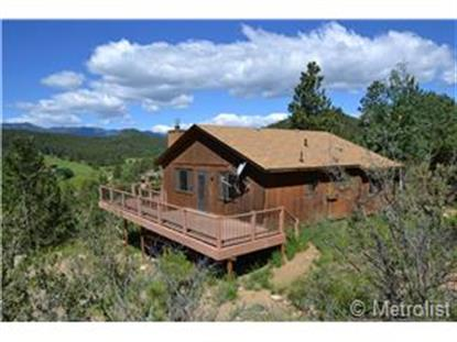 179 Juniper Lane Bailey, CO MLS# 8248204