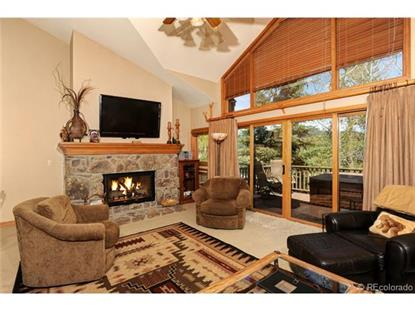 315 South Park Avenue Breckenridge, CO MLS# 8262506