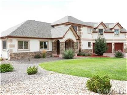 4207 Lions Paw Street Castle Rock, CO MLS# 8579319