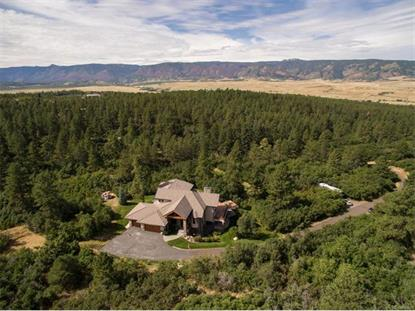 5088 South Perry Park Road Sedalia, CO MLS# 8850169