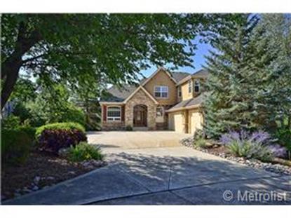 1098 Timbercrest Drive Castle Rock, CO MLS# 8984567