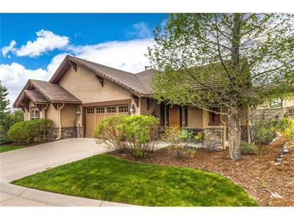 4363 Chateau Ridge Lane Castle Rock, CO MLS# 9064224