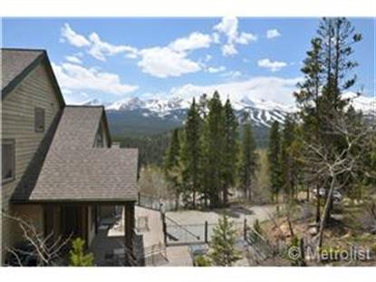 1100 Boreas Pass Road Breckenridge, CO MLS# 9333732