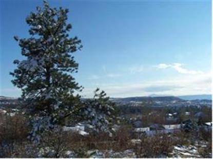 2227 PEAK VISTA CT, Castle Rock, CO