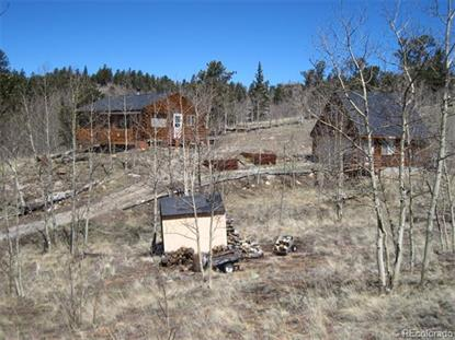 1391 Ute Trail Como, CO MLS# 9770134