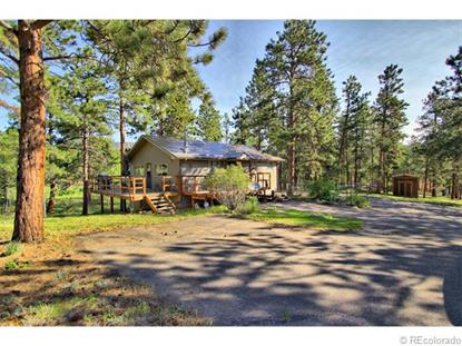428 Impala Trail Bailey, CO MLS# 9859257