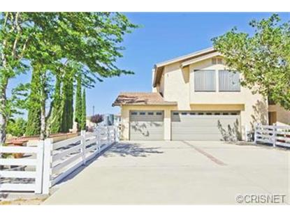 49802 300th Street Lancaster, CA MLS# SR14120569