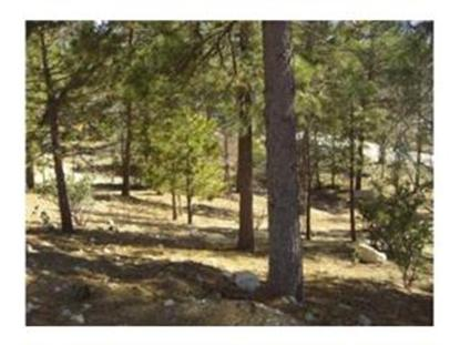 28439 North Bay Road, Lake Arrowhead, CA