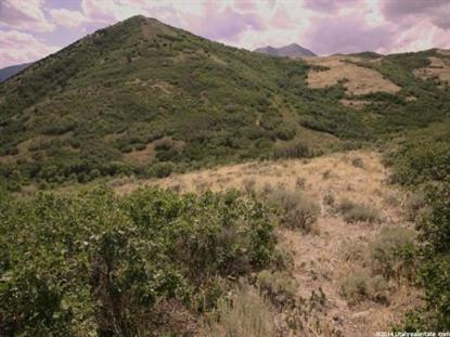 1 LOT 1 SECTION 24 SLC BASE  Cedar Fort, UT MLS# 1251776