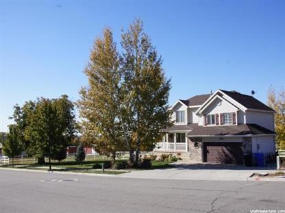 3323 N 850 W  Pleasant View, UT MLS# 1318217