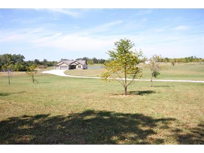 Real Estate for Sale, ListingId: 36111419, Ashland,MO65010