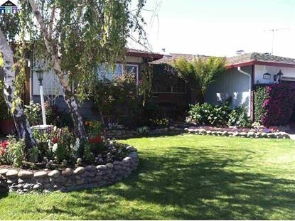4900 Omar St Fremont, CA MLS# 40642490