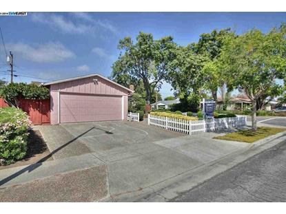 4601 MARGERY DR Fremont, CA MLS# 40675890
