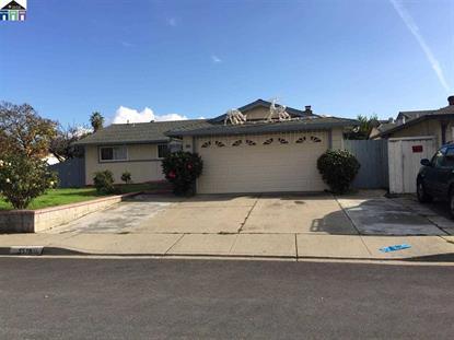 5570 truman place Fremont, CA MLS# 40683264