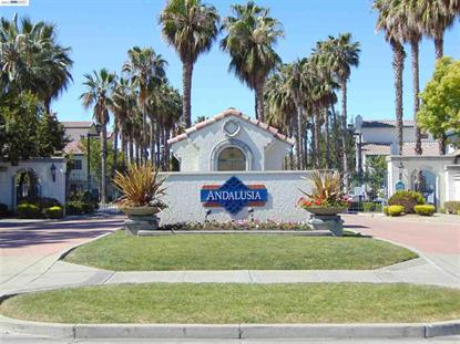 39258 Marbella Terraza Fremont, CA MLS# 40695190