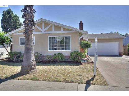 39447 Blue Fin Way Fremont, CA MLS# 40707721