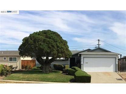 4876 Serra Ave. Fremont, CA MLS# 40713207