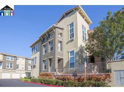 38 Silk Oak Terrace Fremont, CA MLS# 40722985