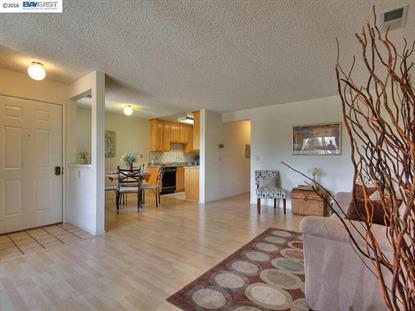 189 SHANIKO CMN Fremont, CA MLS# 40737386