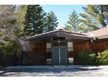 872 Sierra Vista Drive Twin Peaks, CA MLS# EV15053922