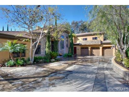 30081 Hillside Terrace San Juan Capistrano, CA MLS# OC14064538