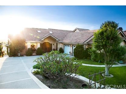 33551 Valle Road San Juan Capistrano, CA MLS# OC14108767