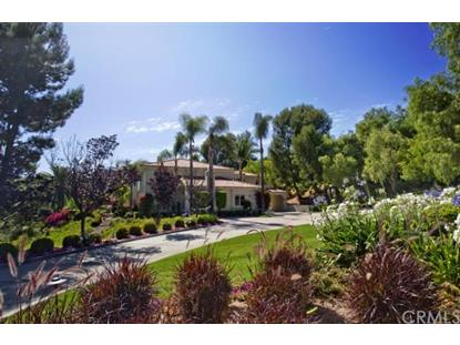 30632 Shadetree Lane San Juan Capistrano, CA MLS# OC14122256